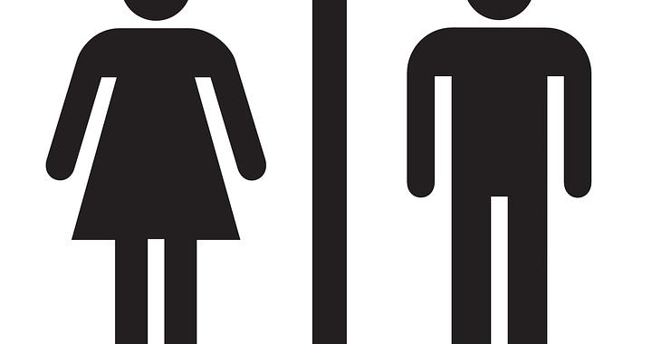 el género y la lengua