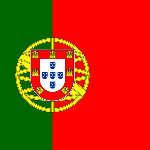 Traductor jurado portugues